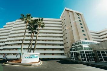 web Palm beach073_CYB8715