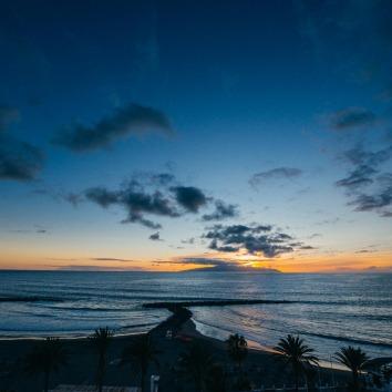web Palm beach117_CYB9100